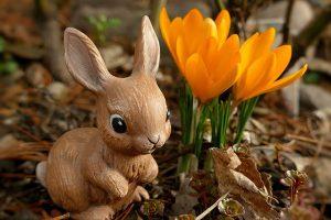 Newsletter zu Ostern